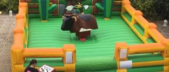 taureau mécanique